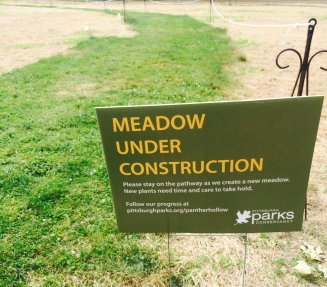 panther-hollow-meadow-under-construction2