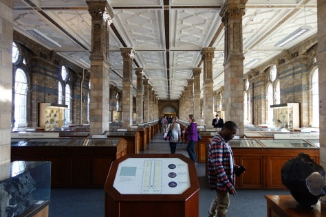 natural-history-museum-2535162